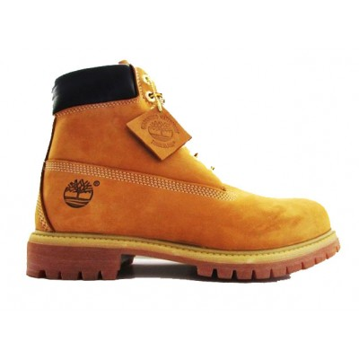 TIMBERLAND JUNIOR 6IN PREM WHEAT NABUC GIALLO CAMMELLO 12909